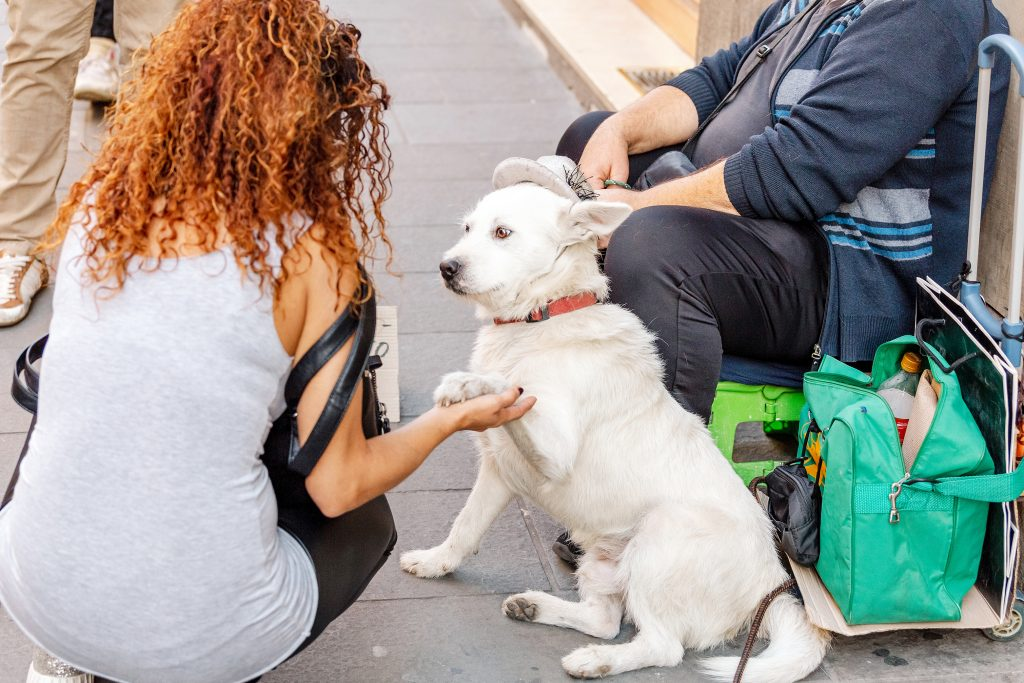 Lady is interacting with a dog of the homeless man on the street.