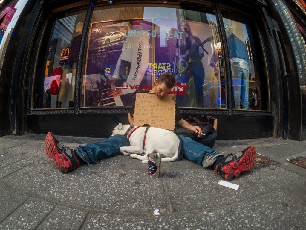 A homeless man is sleeping in front of the store  with his beautiful dog