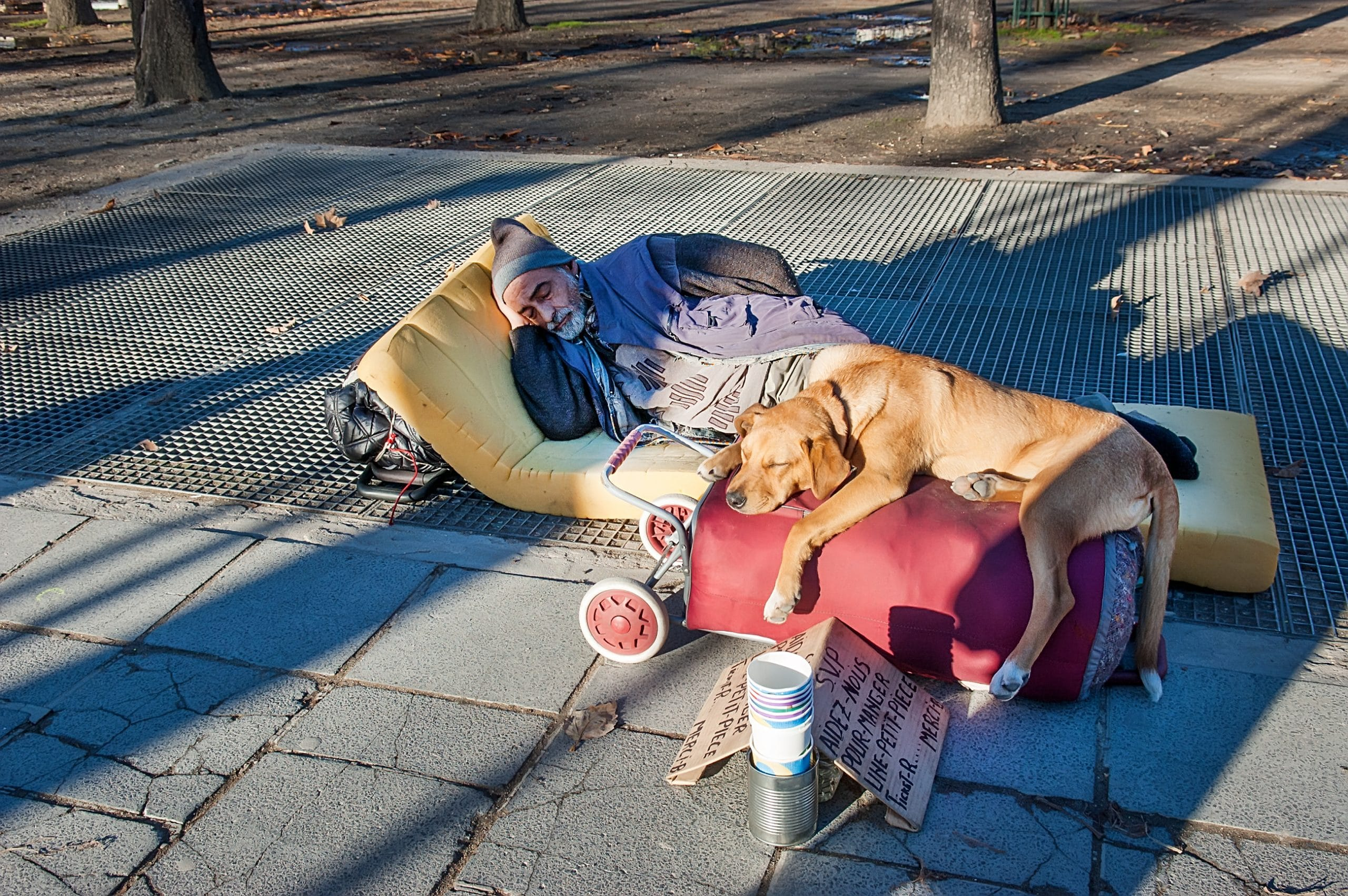 Homeless man sleeping on the street with his dog